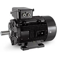 AC motor LSRPM200