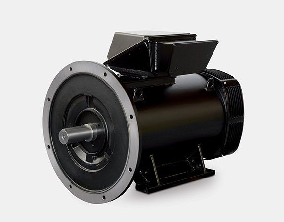 PLSES 4500 Induction motor