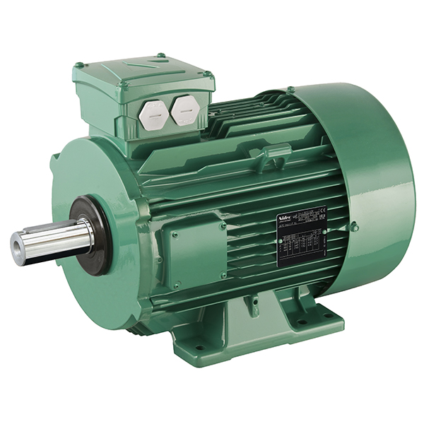 Induction motors leroy somer motors drives products sciox Images